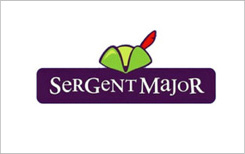 sergent-major-recrutement